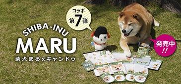 柴犬まるxキャンドゥ第7弾