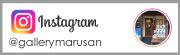 柴犬まる ギャラリーマルサン Instagram