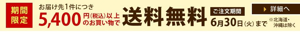 【期間限定】送料無料金額金額引き下げキャンペーン