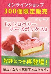【数量限定】ストロベリーチーズボックス