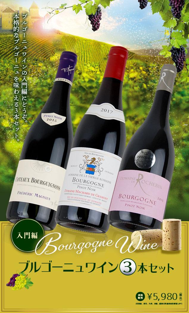 入門編 ブルゴーニュ・ワイン 3本セット — ブルゴーニュ・ワインの入門編にどうぞ。本格的なブルゴーニュを味わえる3本セット。送料無料 5,980円〈税込〉(北海道、東北、九州、沖縄、離島は別途送料計算致します)
