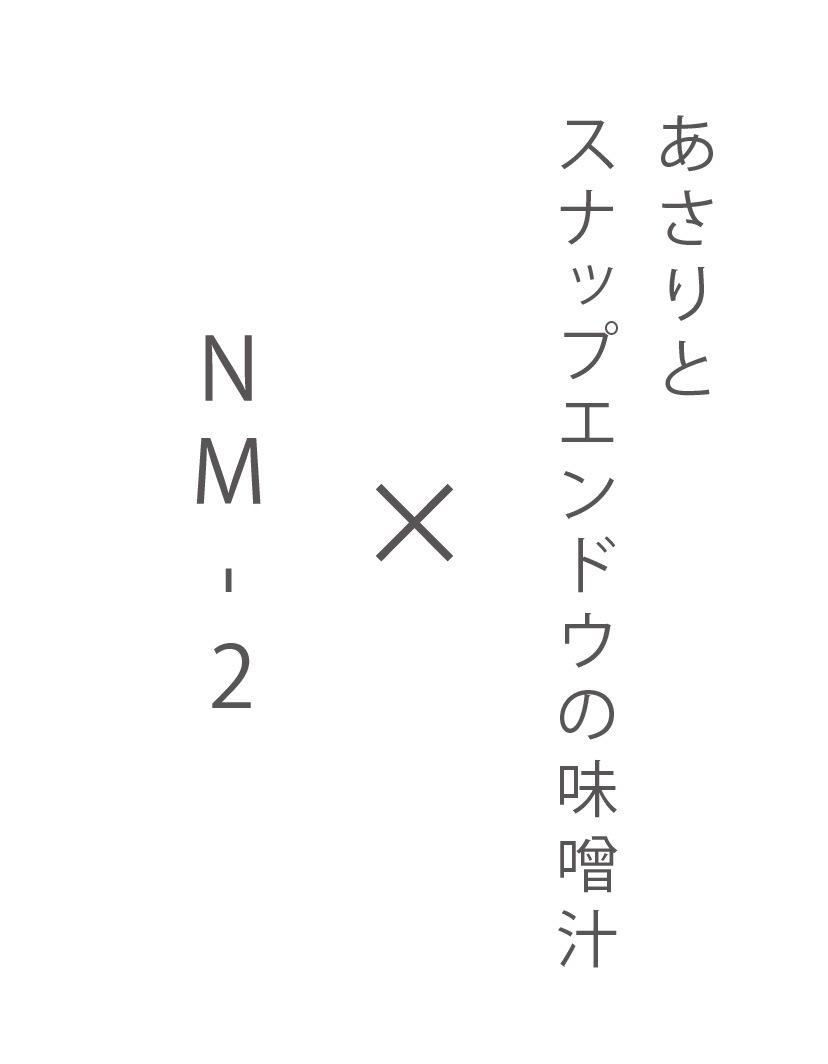 NM-2×
