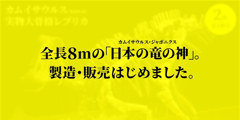 全長8mの「日本の竜の神」。製造・販売はじめました。 カムイサウルス 実物大骨格レプリカ 22,000,000円(税込)