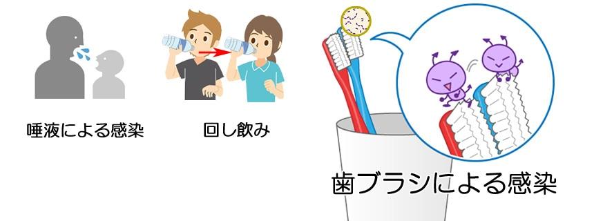 歯ブラシによる感染