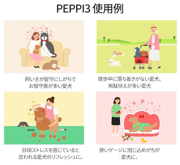 PEPPI3使用例