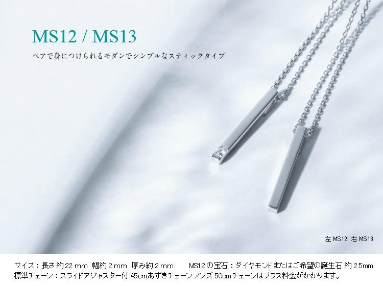 完全防水MS12