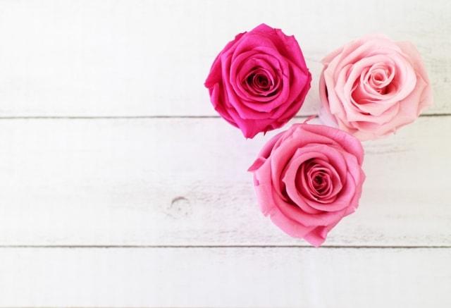 一生の思い出もあせない枯れない花でプロポーズを