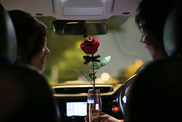 赤バラ1本の花言葉は「あなたしかいない」