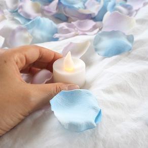 キャンドルと花びら50枚のサプライズ演出セット