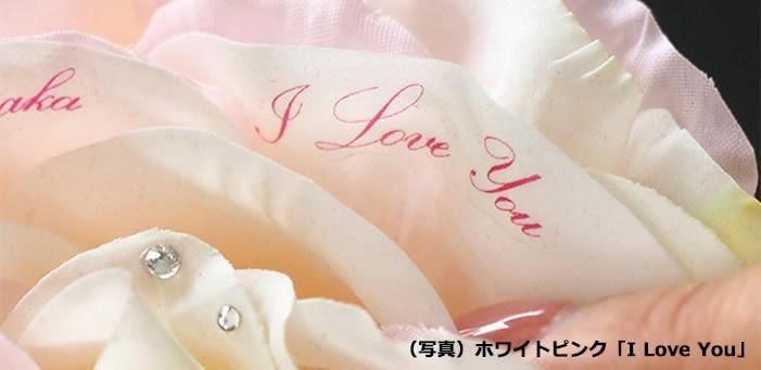 愛を伝える花びらメッセージ