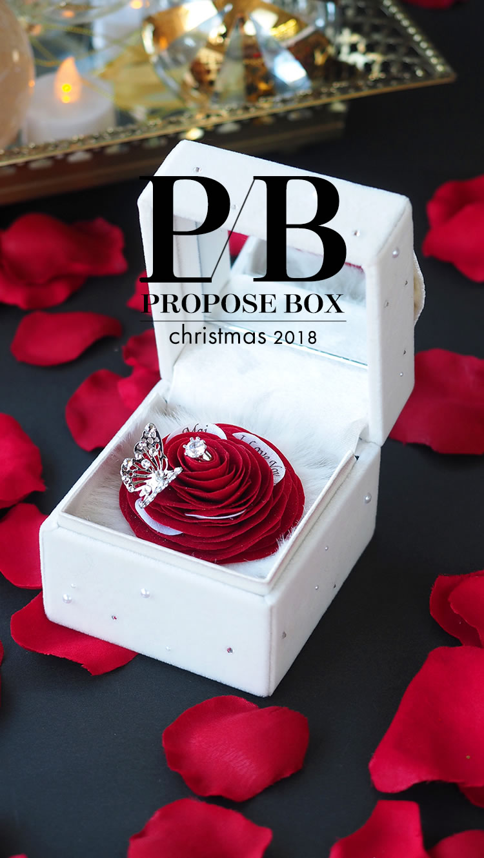 PROPOSE BOX christmas 2018