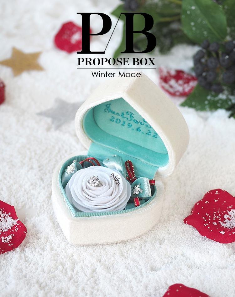 PROPOSE BOX 2019 Christmas