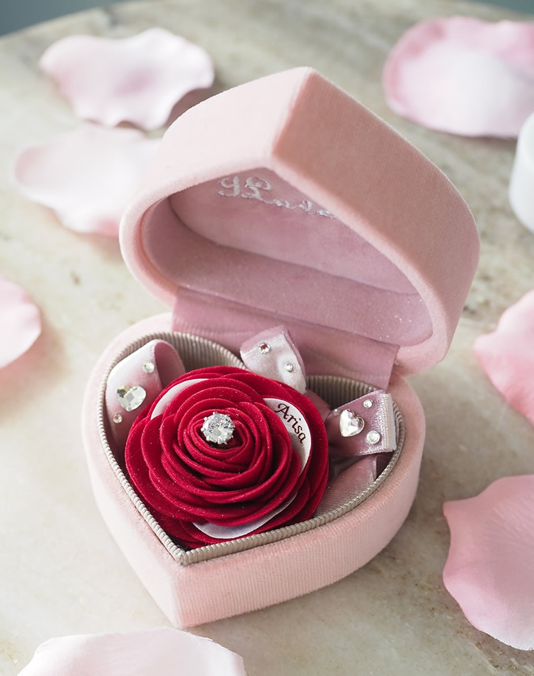 PROPOSE BOX 2020 Diamond Red