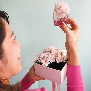 桜ボックスを手に取る彼女