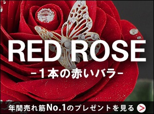 RED ROSE-1本の赤いバラ-