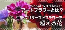 生花・プリザーブドフラワーを超える花