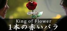 一本の赤いバラ