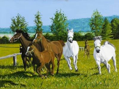 マリウシュ・マクチューカ 「馬」 油彩画