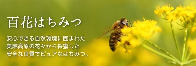 百花はちみつ
