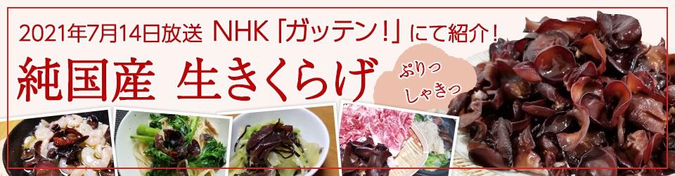 緑工房の純国産生きくらげは肉厚ぷりぷり食感!中華料理だけでなく、和食・洋食どんなお料理にも合います