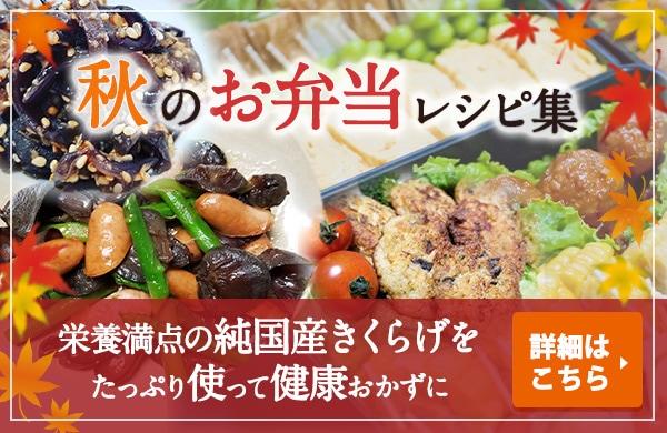 秋のお弁当おかずレシピ集