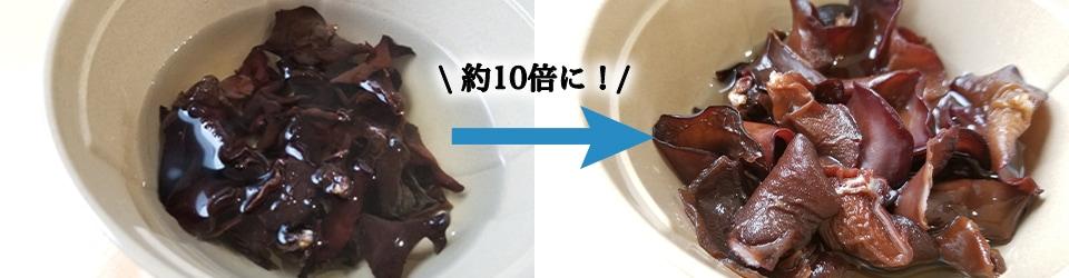 乾燥きくらげの戻し方 乾燥きくらげの戻し方は冷水で約6時間 乾燥きくらげは戻すと約10倍の重量なります