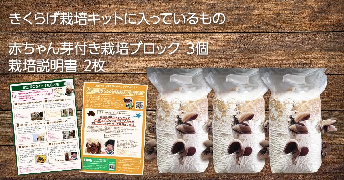 純国産きくらげ栽培キットのセット内容は赤ちゃん芽付き栽培ブロック3個と栽培説明書2枚です