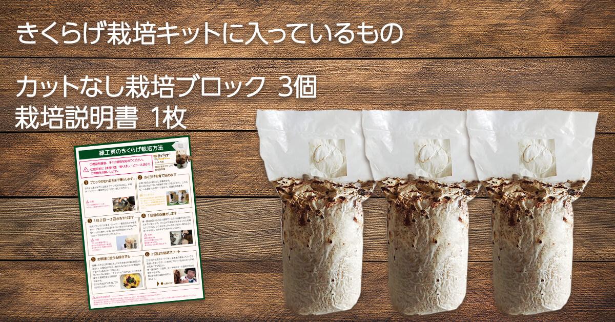 緑工房のエキスパート向け1からはじめるきくらげ栽培キットのセット内容は菌床(栽培ブロック)3個と栽培説明書1枚です