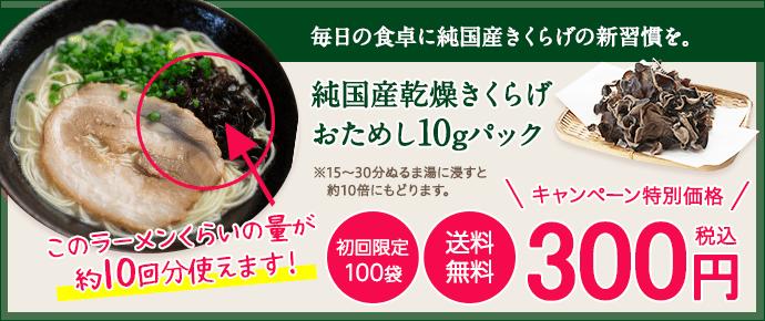 おためし300円