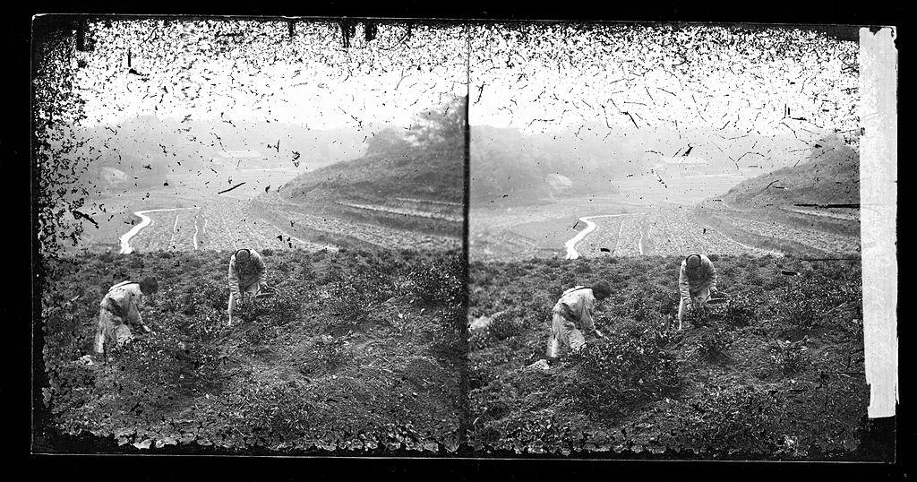 1867年、中国広東省