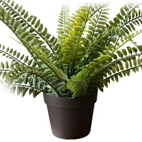 フェイクグリーンポット 植木鉢