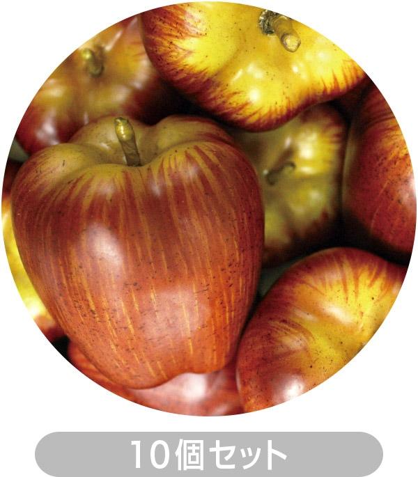 りんご10個セット