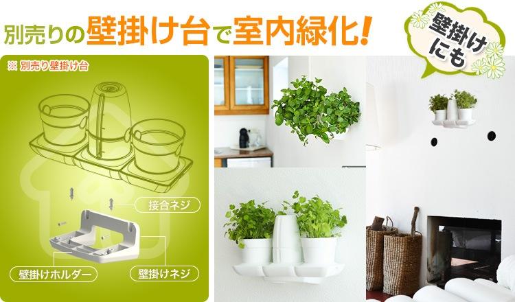 別売りのの壁掛け台で室内緑化!