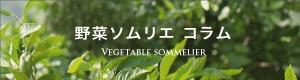 野菜ソムリエ コラム