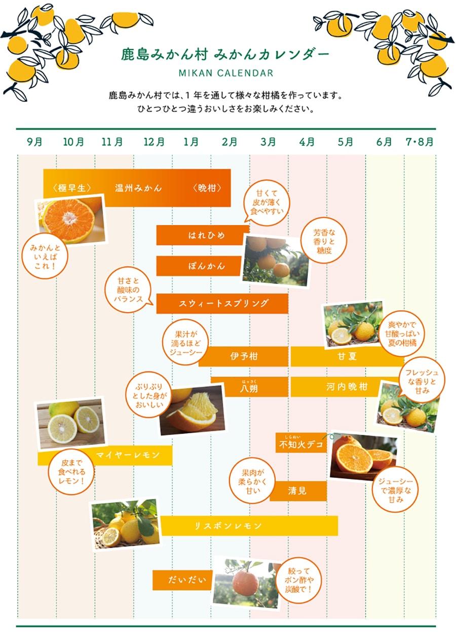 みかんカレンダー