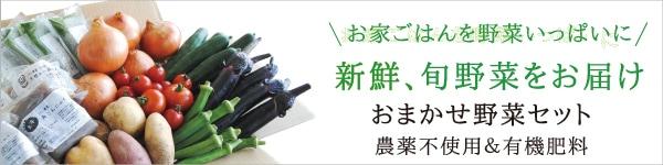 岡山県ミモレ農園産オーガニック野菜を直送 おまかせ野菜セット