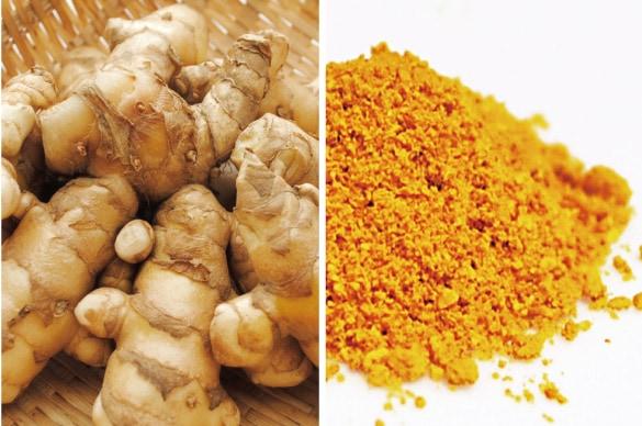 ミモレ農園で育った農薬不使用クスリウコンを100%使用した、無添加「クスリうこん粉末」です。