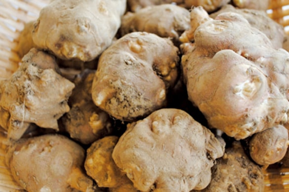 ミモレ農園 無添加 生姜仕立て 菊芋の和風スープ