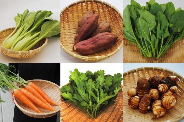 ミモレ農園旬のプチお野菜セット
