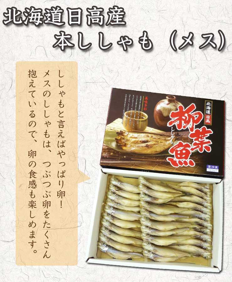 北海道日高産 本ししゃも(メス)/シシャモと言えばやっぱり卵!メスのししゃもは、つぶつぶ卵をたくさん抱えているので、卵の食感も楽しめます。
