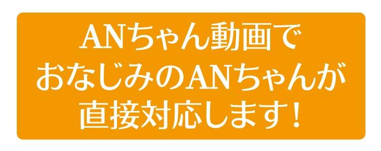 ANちゃん動画でおなじみの ANちゃんが 直接対応します!画像SP用