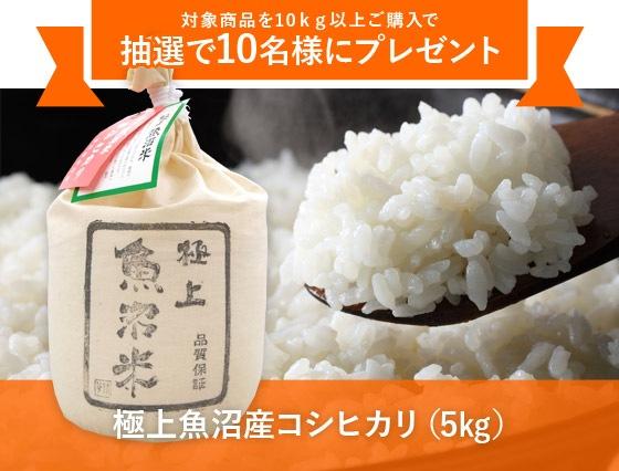 対象商品を10�以上ご購入で抽選で10名様にプレゼント「極上魚沼産コシヒカリ(5�)」