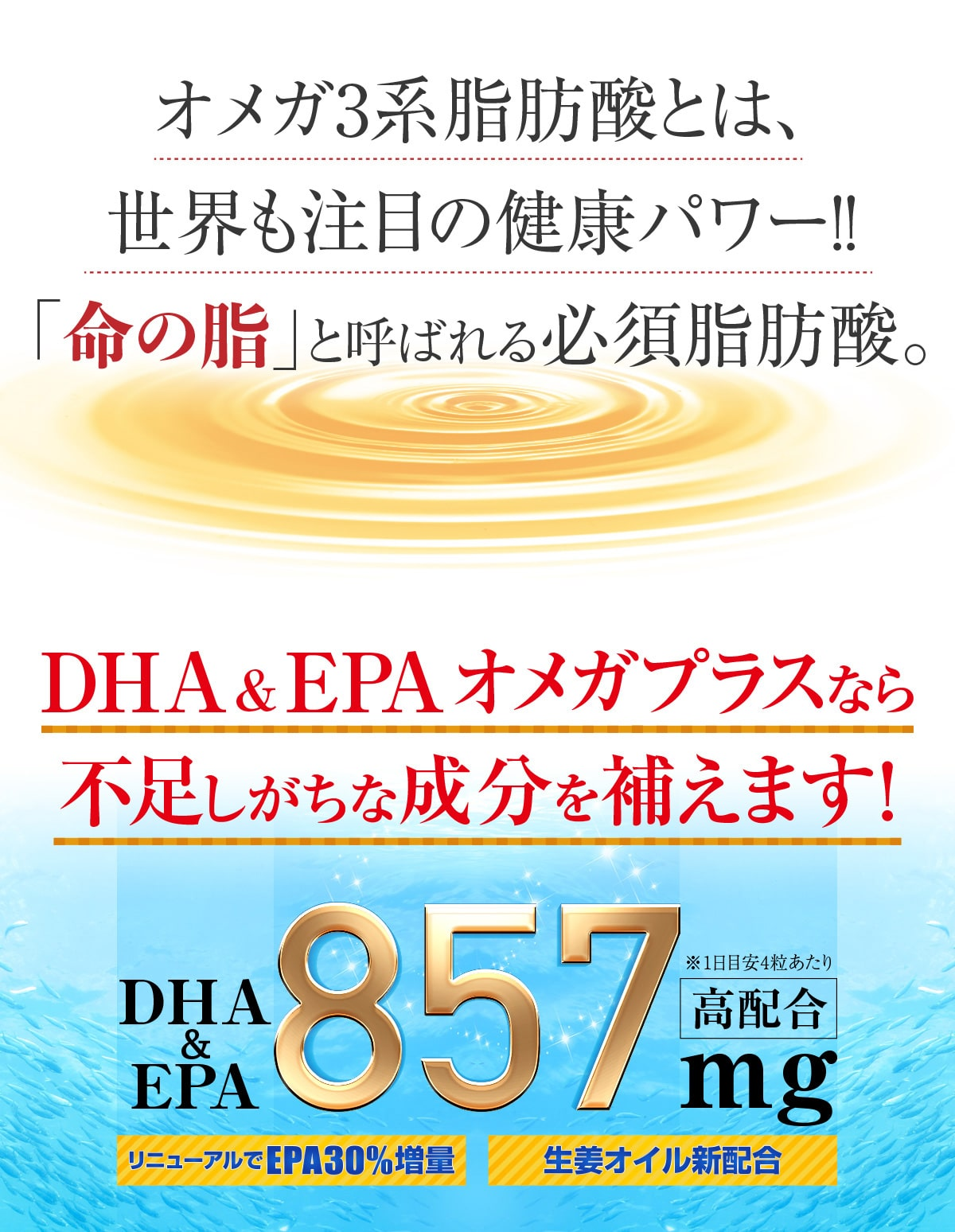 オメガ3系脂肪酸とは、世界も注目の健康パワー!!