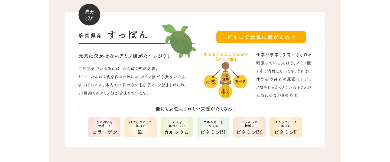 成分01 静岡県産 すっぽん