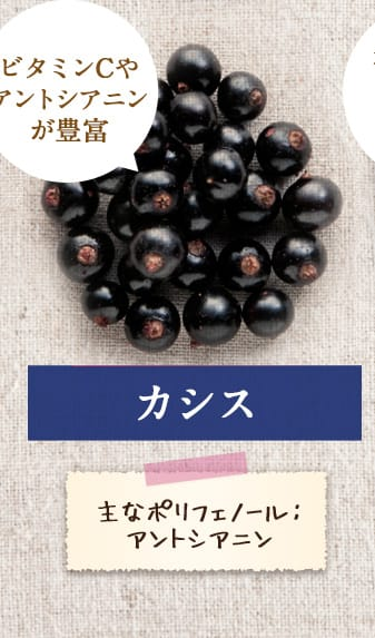 【カシス】「ビタミンCやアントシアニンが豊富」主なポリフェノール:アントシアニン
