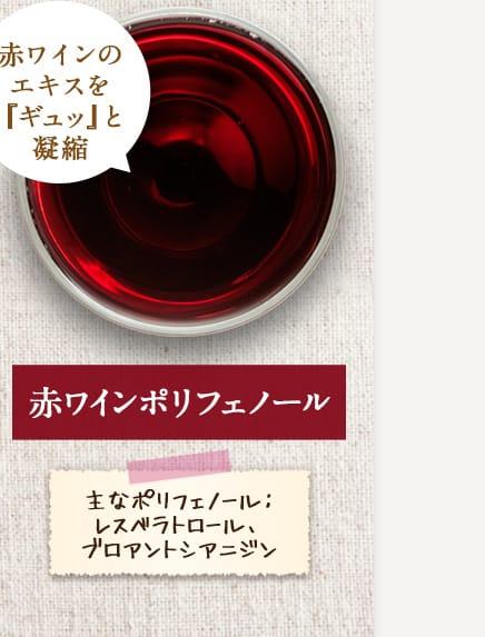 【赤ワインポリフェノール】「赤ワインのエキスを『ギュッ』と凝縮」 主なポリフェノール:レスベラトロール、ブロアントシアニジン
