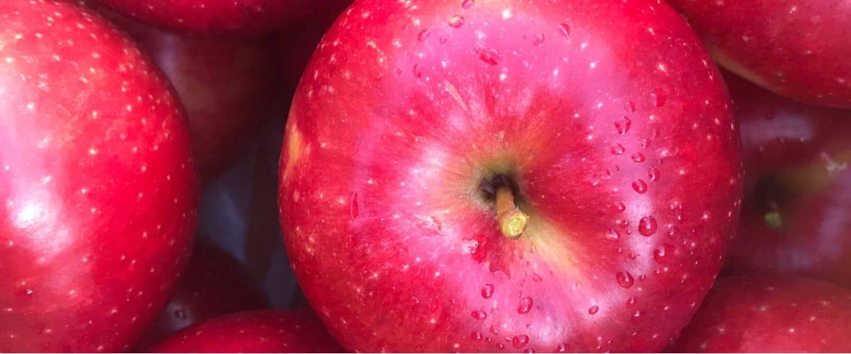 我が家の保存方法 臭い消しに有効なのはりんご