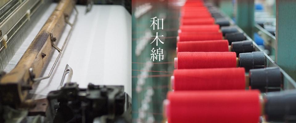 和木綿の画像