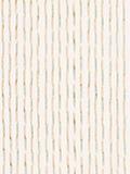 縞柄(白)の写真
