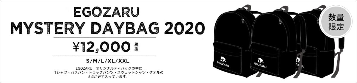 EGOZARU2020